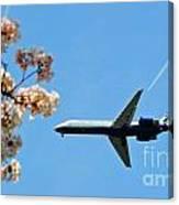 Air Tran Airlines Canvas Print
