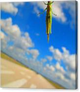 Airplane Hitchhiker Canvas Print