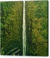 'akaka Falls Canvas Print