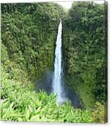 Akaka Falls Canvas Print
