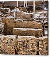 Akrotiri Archaeological Site In Santorini Canvas Print