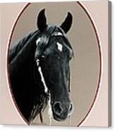Al Zirr Portrait Canvas Print