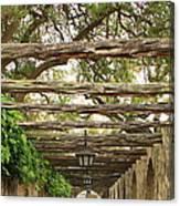 Alamo Walkway Canvas Print