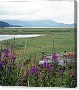 Alaska - Juneau Wetlands Canvas Print