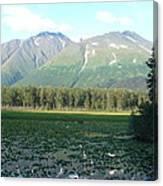 Alaska Lake 2 Canvas Print