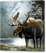 Alaska Moose With Floatplane Canvas Print