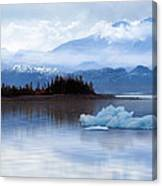 Alaskan Mountain Side Canvas Print
