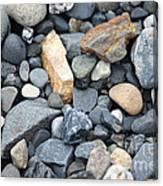 Alaskan Sand II Canvas Print