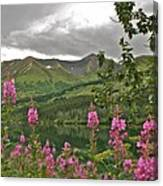 Alaskan Summer Canvas Print