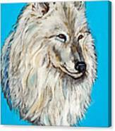 Alaskan White Wolf Original Forsale Canvas Print