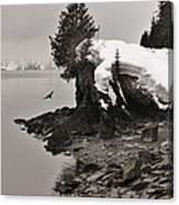 Alaskan Winter Coast Canvas Print