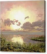 Alba Nella Palude Canvas Print