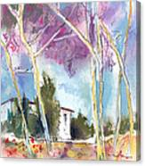 Albatana 02 Canvas Print