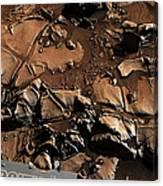 Alexander Hills Bedrock In Mars Canvas Print