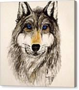 Alfa Canvas Print