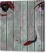 Alice On The Fence Canvas Print