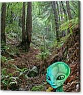 Alien In Redwood Forest Canvas Print