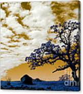 Alien Landscape 1 Canvas Print