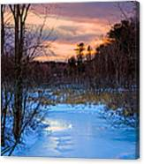 Alive And Well In Maine Canvas Print