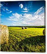 All American Hay Bales Canvas Print