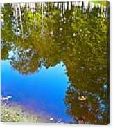 All Pond Treeflection Canvas Print