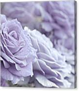 All The Lavender Roses Canvas Print