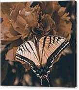 All Things Become New Canvas Print