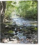 Allen Creek Canvas Print