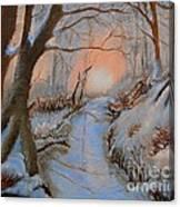 Allen Kingwell Liquin Study Canvas Print
