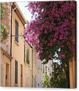 Alley With Bougainvillea - Provence Canvas Print