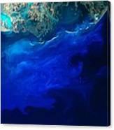 Allgal Bloom Of A Coastline Canvas Print