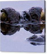 Alligator Eyes On The Foggy Lake Canvas Print