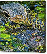 Alligator Mother's Day Canvas Print