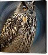 Almeria Wise Owl Living In Spain  Canvas Print