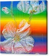 Almond Branch In The Spectrum Canvas Print