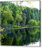 Almost Fall Canvas Print