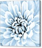 Almost Perfect-blue Canvas Print