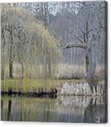 Almost Spring Canvas Print