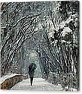 Alone In The  Winter Canvas Print