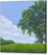 Alone Summer Canvas Print