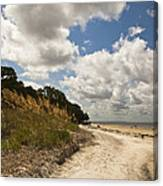 Along The Beach Canvas Print