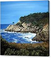Along The California Coast Canvas Print