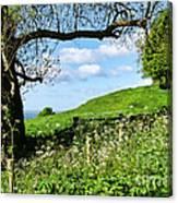 Along The Coastal Path - Lyme Regis 2 Canvas Print