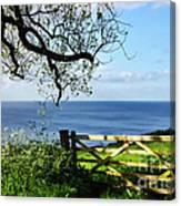 Along The Coastal Path - Lyme Regis Canvas Print