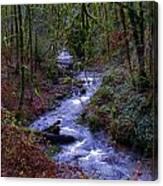 Along The Creek Canvas Print