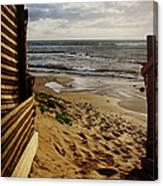 Along The Dunes Canvas Print