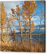 Along The Lake Canvas Print