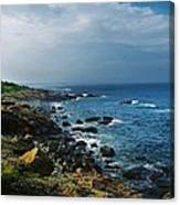 Along The Marginal Way Canvas Print