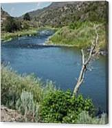Along The Rio Grande River Canvas Print