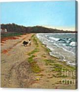 Along The Shore In Hyde Hole Beach Rhode Island Canvas Print